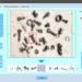 生産工程向けAI搭載画像検査システム AI Inspector(AIインスペクター)
